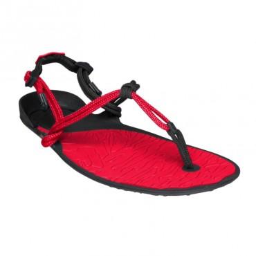 Sandale minimaliste Xero Shoes Amuri Cloud Femme Rouge