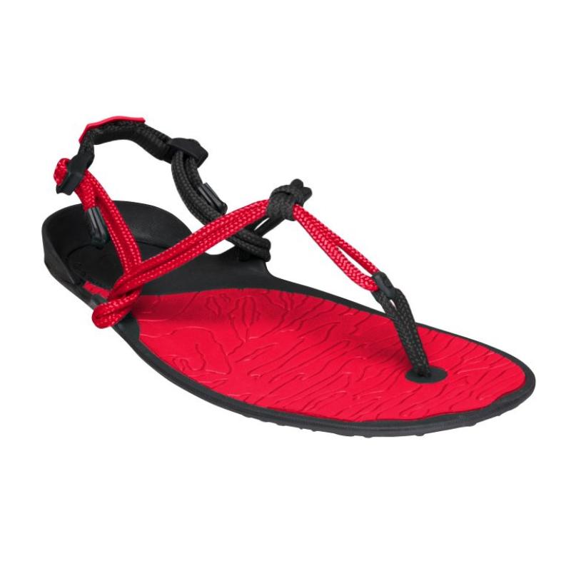 Sandale minimaliste Xero Shoes Amuri Cloud Homme rouge